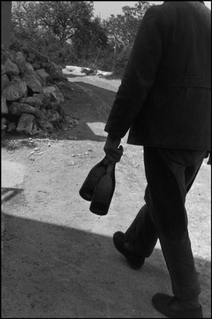 FRANCE—A Champagne vineyard, Marne, 1960. © Henri Cartier-Bresson / Magnum Photos
