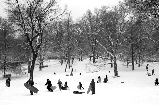 Pilgrim Hill, Central Park © Doug Kim