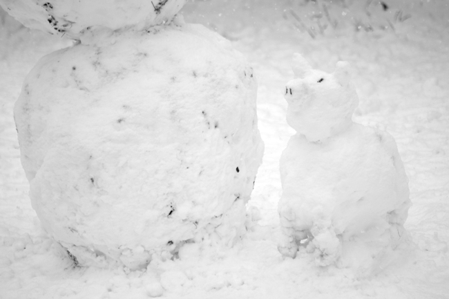 Snow Pig, Washington Square © Doug Kim