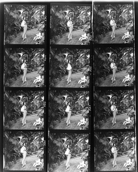 Anne St. Marie Contact Sheet, Tom Palumbo