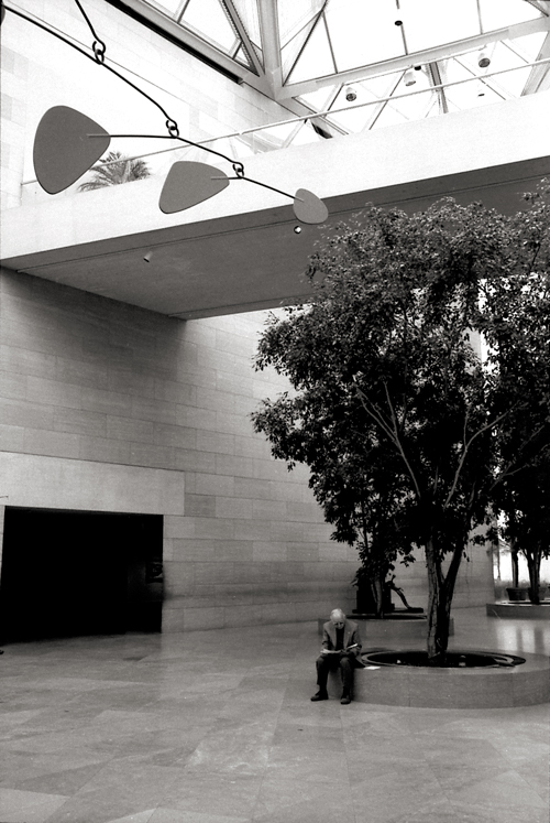 Calder, National Gallery of Art; Leica M6 TTL 0.58, 35mm Summicron, Agfa APX 400 © Doug Kim