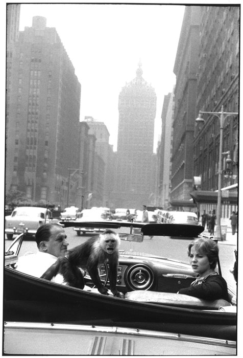 Park Avenue, New York, Garry Winogrand, 1959 © The Estate of Garry Winogrand