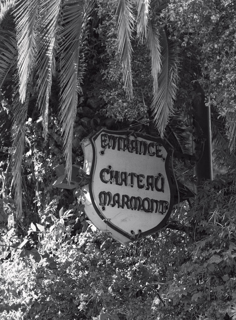 Chateau Marmont, California Dreaming © Paul Jasmin 2008