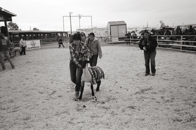Livestock Auction, Navajo Fair, Shiprock, NM © Doug Kim; Leica MP 0.58, 35mm Summicron,