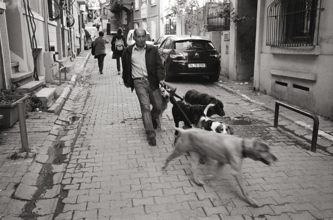 Çukurcuma, Istanbul, Turkey; Leica MP 0.58, 35mm Summicron, Kodak Tri-X © Doug Kim