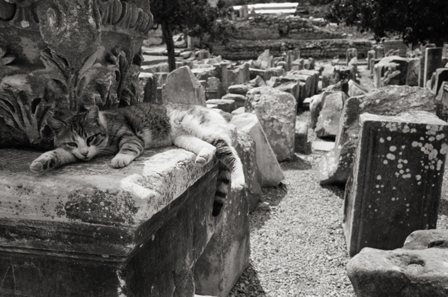 Ephesus, Turkey; Leica MP 0.58, 35mm Summicron, Kodak Tri-X © Doug Kim